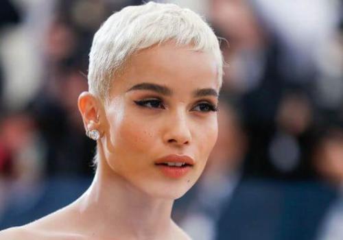 Короткие стрижки 2019. Фото новинок коротких женских стрижек в 2019 году