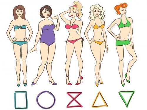 Какие бывают типы фигур у женщин. Типы женских фигур и как определить свой
